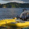 Avi Klapfer and Steve Drogin's vision resulted in the DeepSea Submersible