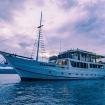 M/Y Oceanic for your Indonesia liveaboard diving holidays