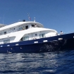 Liveaboard expeditions in the Philippines with Infiniti