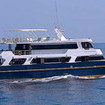 Indonesia liveaboard trips to Komodo Island & Raja Ampat with Mermaid I