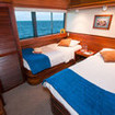 Dolphin twin bed cabin aboard MY Eric - Ecoventura Galapagos Islands cruise
