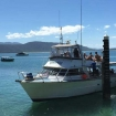 MV Sunkist - your dive boat in Fitzroy island overnight packages
