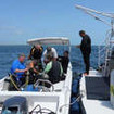 Avalon II liveaboard offers nitrox for diving Jardines de la Reina Marine Park