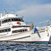 MV Manta Queen 6 for liveaboard diving safaris in the Similan islands