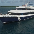 Diving safaris to Turneffe & Lighthouse reefs with Belize Aggressor IV liveaboard