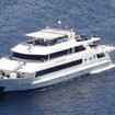 Royal Evolution - another view of this liveaboard in the Red Sea
