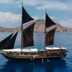 Awesome Indonesia liveaboard dive tours with the KLM Jaya