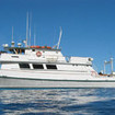 MV Islander liveaboard charters for great white shark cage diving in Guadalupe