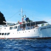 Awesome Philippines liveaboard MY Oceanic Explorer