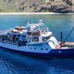 Awesome Komodo diving cruises with Empress II