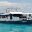 Emperor Atoll is a stable single deck, budget Maldives liveaboard diving charter