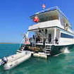 Cuba liveaboard diving cruises with the Avalon I in the Queen's Gardens
