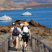 Ecoventura operates 3 liveaboards specialising in Galapagos natural history safaris