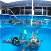 Get underwater without leaving the boat! Reef Endeavour's on board swimming pool.