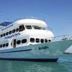 MV Pawara for diving cruises from Phuket to Similan Islands, Richelieu Rock & Hin Daeng