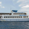 Thailand diving cruises to Similans, Richelieu and Hin Daeng with the Parawa liveaboard