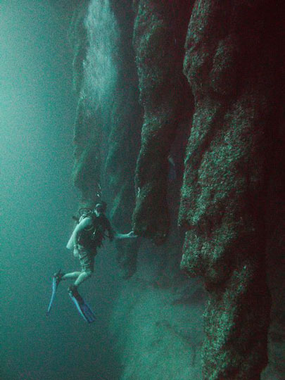 Something is. Great blue hole belize diving that