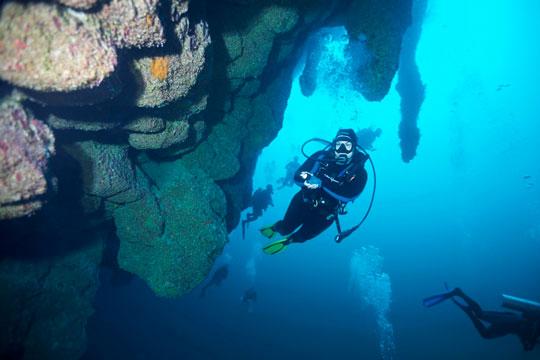 Hole Great belize diving blue