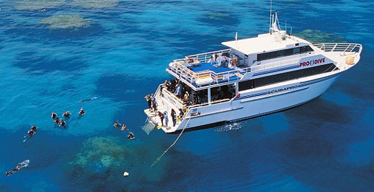 Liveaboard Diving Cruises in Australia   Dive The World