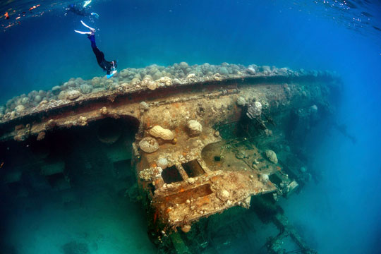 Palau scuba diving trips frequently asked questions - Dive time tours ...