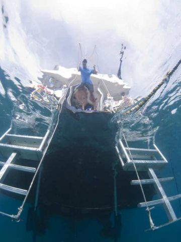 Liveaboard Diving Cruises in Belize   Dive The World ...