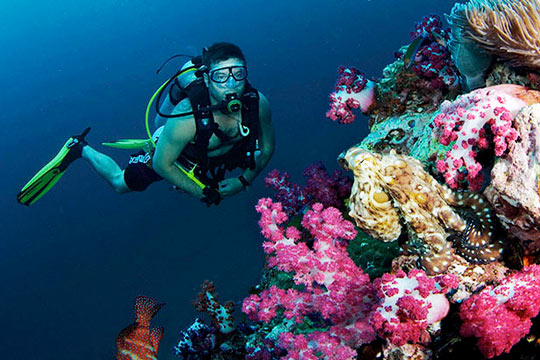 Diving in krabi ao nang thailand dive the world vacations - Where to dive in thailand ...