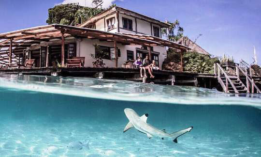Raja ampat dive resorts indonesia dive the world vacations - Dive resort raja ampat ...