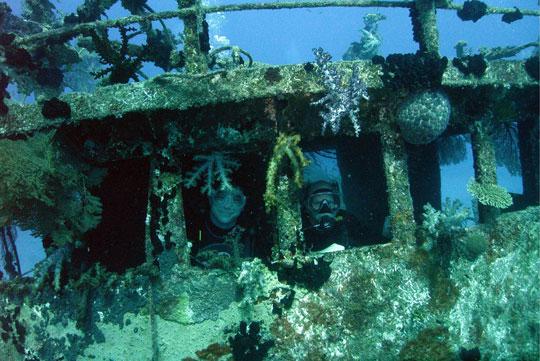 Diving At Beqa Island Lagoon Fiji Dive The World Vacations