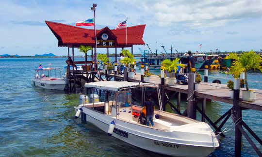 Dive boat business plan