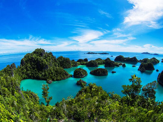 Liveaboard Diving Cruises In Raja Ampat Indonesia Dive
