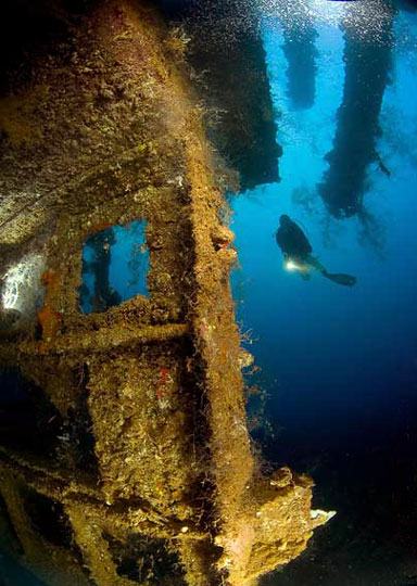Scuba Diving in Palau, Micronesia | Dive The World Vacations |Palau Dive Destinations
