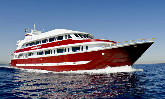 Liveaboard Diving Cruises In Sudan