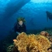 Scuba diving in the shallows, Manado, Sulawesi