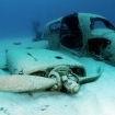 An airplane wreck in the Bahamas