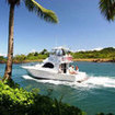 Fishing trips are popular from Pacific Harbour, Coral Coast, Viti Levu