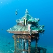 A creative artificial reef in Bali