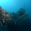 The Carnatic wreck, Egypt's Red Sea