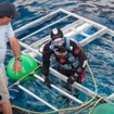 A diver exits the cage