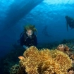 Diving at Bunaken Island