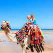 Experience a camel ride in Egypt