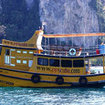 Diving day trips in Phi Phi, Thailand