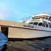 Similan liveaboard safaris from Phuket, Thailand