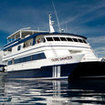 Palau liveaboard diving cruises