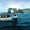 Liveaboard diving at the famous Galapagos Arch