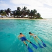 Snorkelling in Ambergris Caye