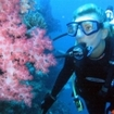 Scuba diving in Fiji's Koro Sea