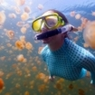 Snorkelling at Jellyfish Lake, Palau