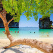 Holiday activities in Phi Phi -  snorkelling at Maya Bay