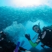 Trekking and diving holidays in the Galapagos Islands