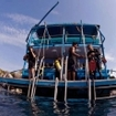 Liveaboard diving in the Similan Islands